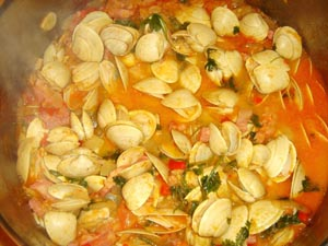 Clams with Tomato (Amêijoas em Tomate)